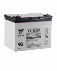 Batería Yuasa REC36-12 12V 36Ah