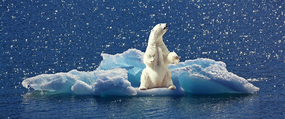 Las energías renovables y el calentamiento global