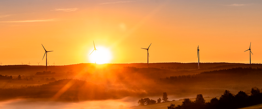El consumo de energía renovable se dispara en EEUU
