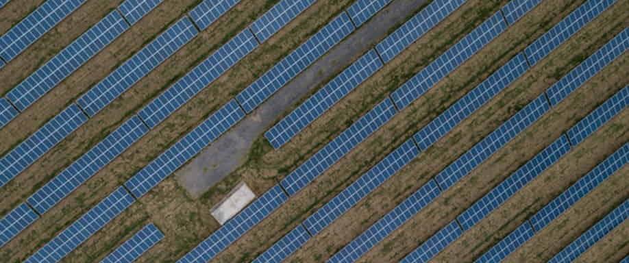 Ventajas de la energía solar en la ganadería