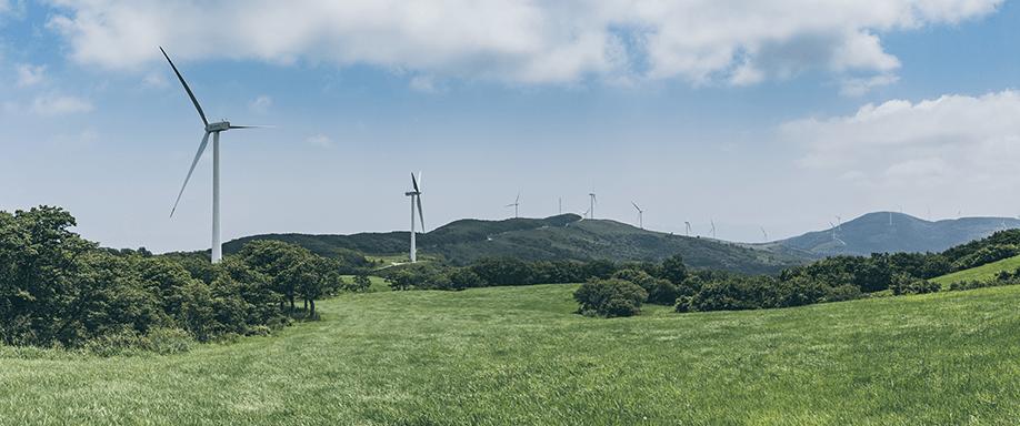 El 2020, récord de producción con energías renovables