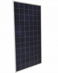 Panel Solar 320W 24V Jinko Policristalino
