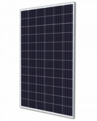 Panel Trina Solar 280W Policristalino